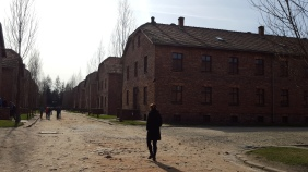 The camp buildings in Auschwitz I, now mainly individually exhibits coverin different aspects of the camp