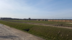 The view down the train line towards the demolished gas chambers at Birkenau