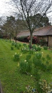 Barn Conversion with rose border, Hurst House